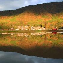 【秋の水鳥の道】当館から車で約20分、水鳥公園への道(亀岡市長賞画像・h2704)
