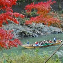 紅葉の色づきが美しい。秋の保津川下りの様子