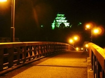 唐津城 夜景
