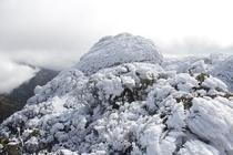 積雪期の黒味岳