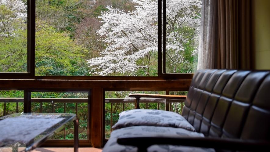 *【おまかせ和室】桜の季節を目当てに来られるお客様も多いです