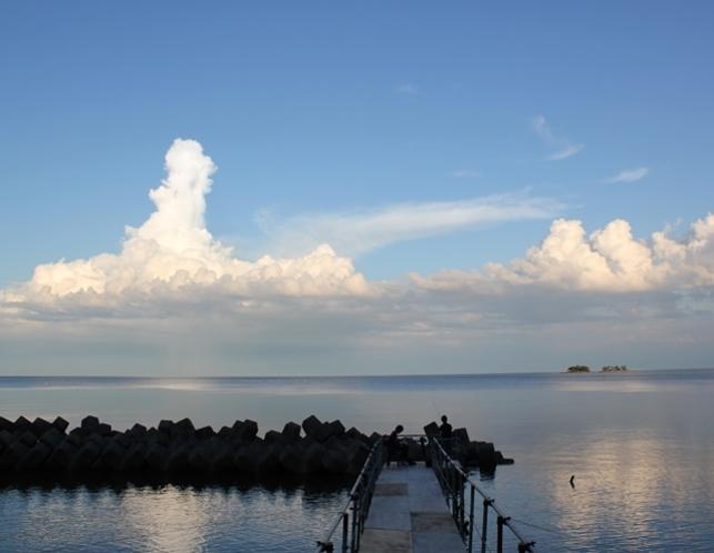 桟橋(カスタムページ用)はしもと屋専用の桟橋で、のんびり釣りや読書をお楽しみください。