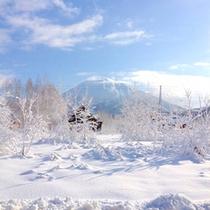 【周辺】当館からの羊蹄山の眺め。ここでしか見られない絶景です。