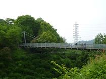 森の宝島(つり橋)