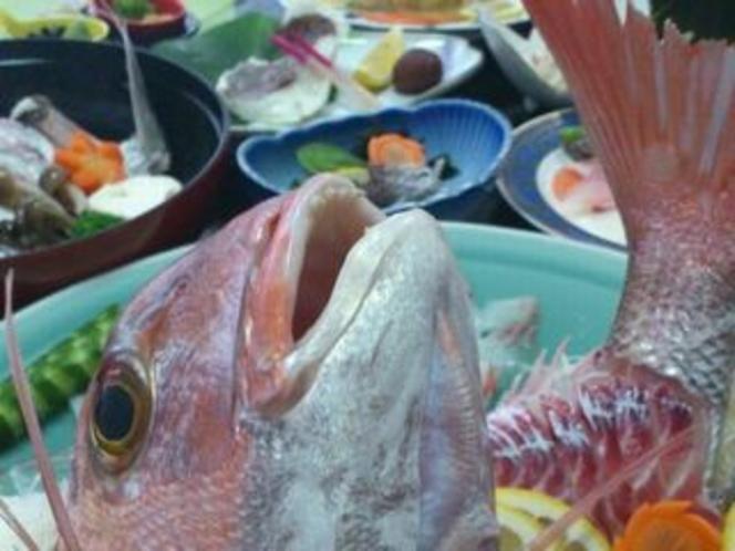 さくら鯛を使った料理の数々