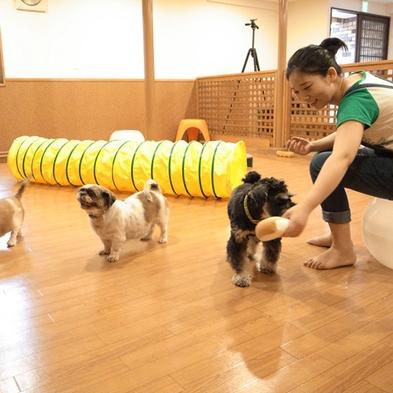 【秋冬旅セール】【ペット(犬)とお泊り】ビジネスや帰省にも★シンプルに素泊まりプラン♪