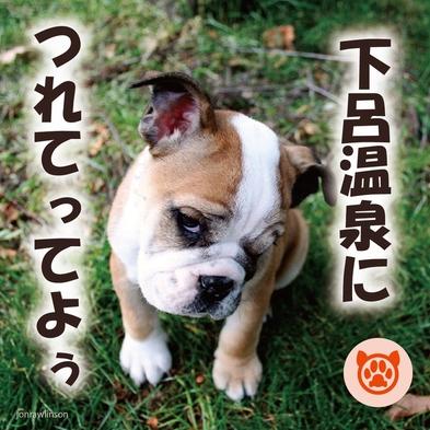 【ペット(犬)同宿歓迎☆】アルメリアでのプレミアムバイキング!