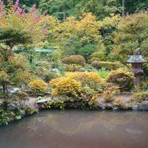 *【庭園】お部屋から眺望する緑いっぱいの庭園になります。