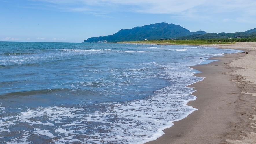 波打ち際から弥彦山を望む