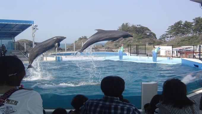 【チケット付】越前松島水族館入館券付プラン