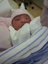 産れたばかりの赤ちゃん