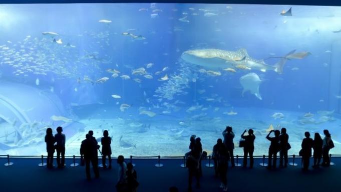 【観光】世界淡水魚水族館☆『アクア・トト』チケット付☆2食付き⇒マイカープラン 女子旅にもオススメ