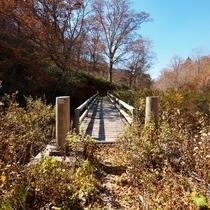 【奥利根水源の森】キャンプ場、水飲み場、トイレなどが利用できます。
