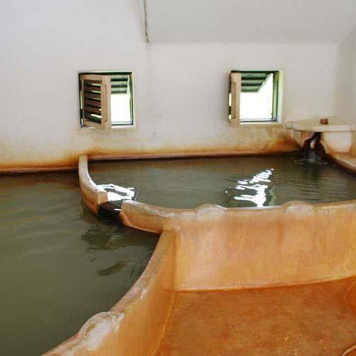 ラムネ温泉館の内湯