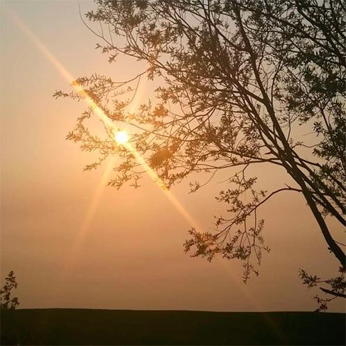 *【周辺景色】こんな夕日を眺められる夕暮れ時は、のんびりお散歩がおすすめ。