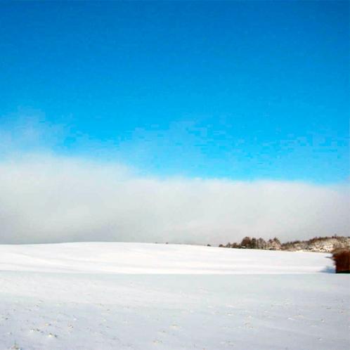 *【周辺景色】冬はより一層空気が澄んで、清々しい青空が気持ち良いです。