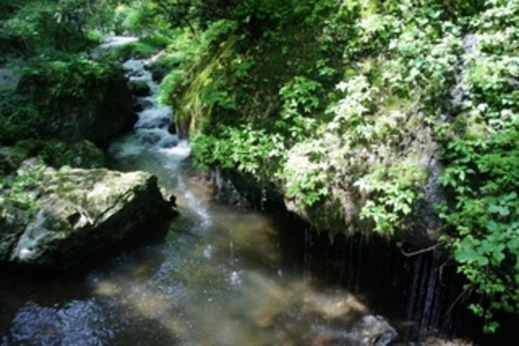 【神庭の滝】マイナスイオン出まくりで本当に癒されます。。。