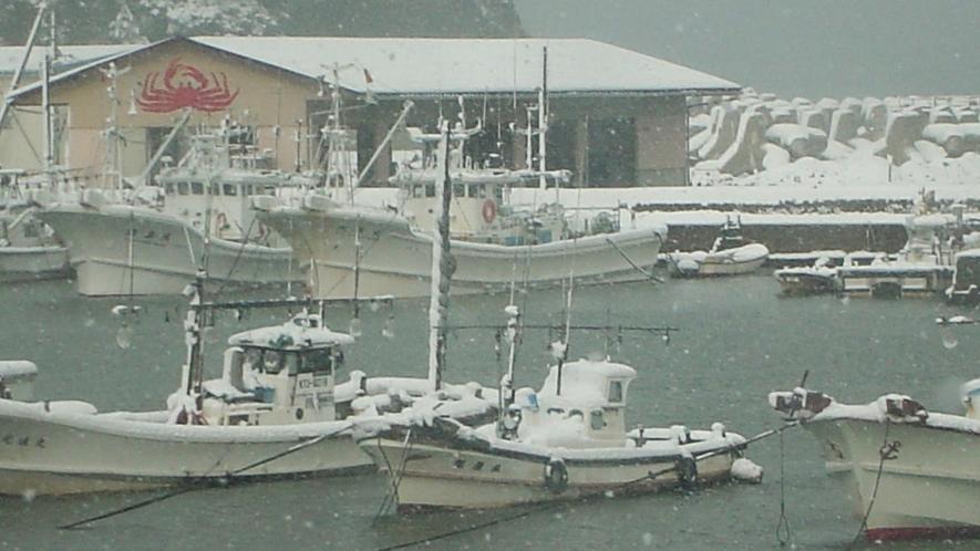*浅茂川漁港(冬)