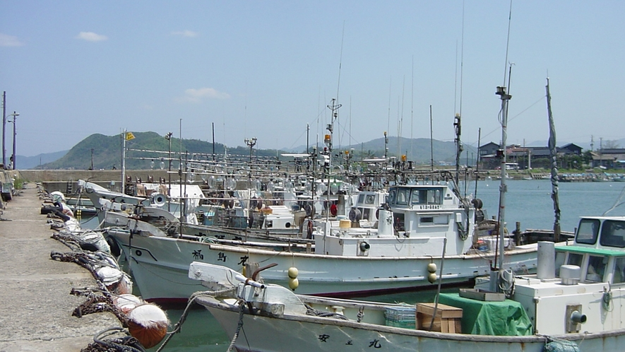 *浅茂川漁港