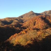 *紅葉時期(例年10月下旬~11月1週頃)は山がオレンジ色に包まれ、写真家たちの密かな穴場スポット