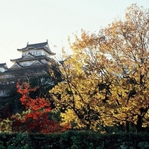 【姫路城】秋=紅葉と姫路城