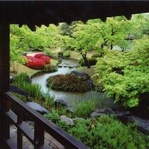 【好古園】流れの平庭