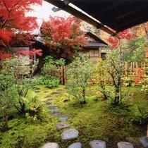 【好古園】茶室双樹庵と紅葉