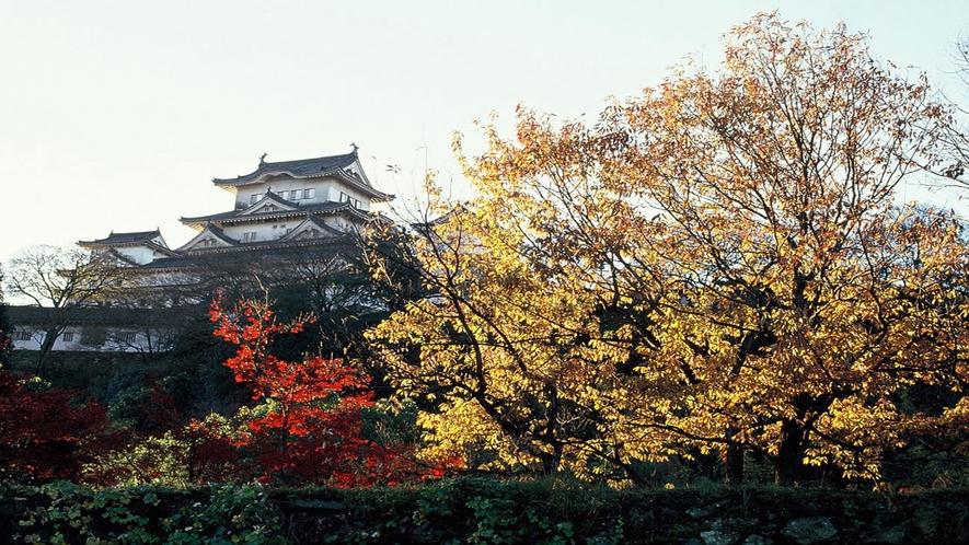 【姫路城】秋 紅葉と姫路城