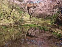 城址公園内お濠跡の池