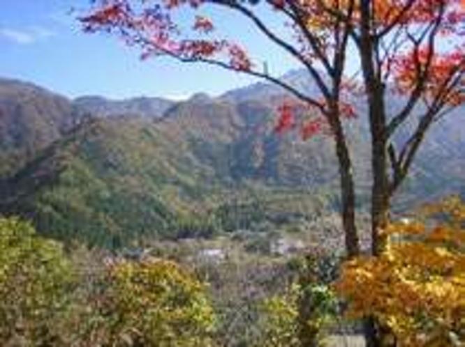 秋の福地山山頂