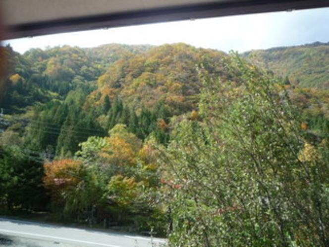 道路沿いの客室から臨む紅葉
