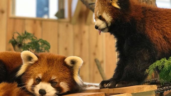 【シャボテン動物公園入場券付×2食付】コロナを忘れて楽しむ!全員分のチケット付