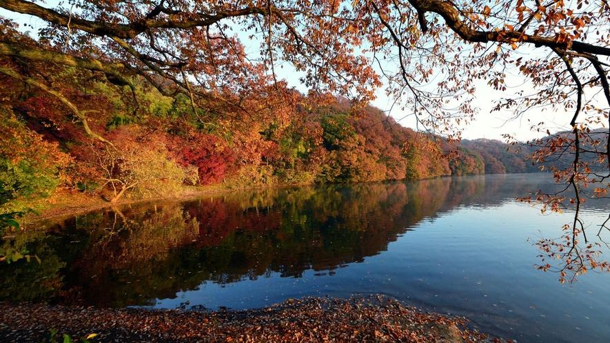 *紅葉の一碧湖