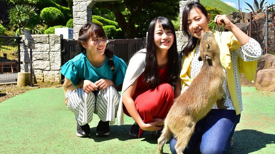 *【伊豆シャボテン動物公園】カピバラさんと記念撮影♪