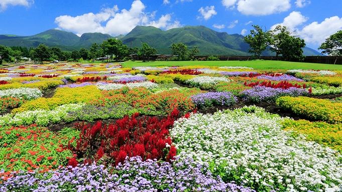 【くじゅう花公園入園チケット付き】美しい自然を満喫!1泊2食付