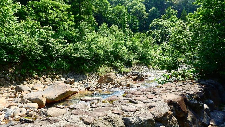 *川の音にじっくりと耳を傾け、何もしない癒しの時間をお過ごしください。