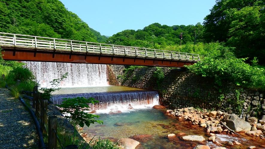 *山奥ならではの大自然に包まれて、日頃の疲れを癒しましょう!