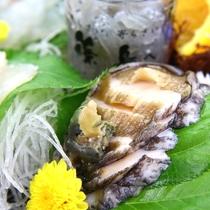 新鮮なアワビのお造りはコリコリと食べ応えがあります
