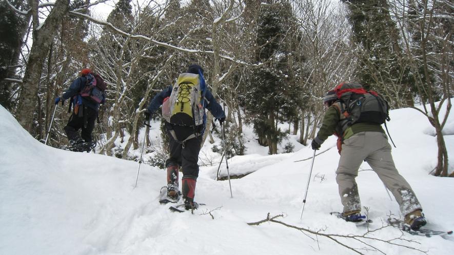 *冬のハイキング