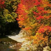 湯西川を望む・・・絶景のロケーション。。。極上の温泉タイムを・・・お過ごしください。。。