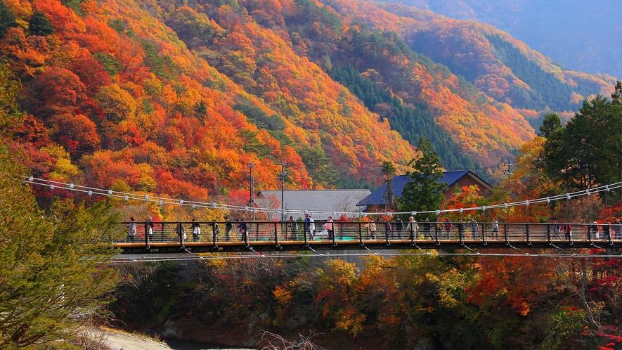 """2011年に完成した観光スポット""""四季折々の美しい""""迫力満点の大吊り橋!水の郷の新しいシンボルです。"""