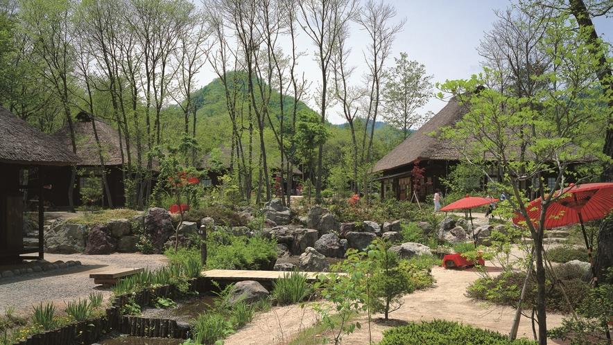 【平家の里】は沢山の自然・郷土料理・笑顔で。。。訪れる人を温かい雰囲気で包み込んでくれます。。。