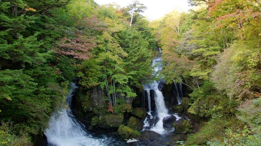 【竜頭の滝】長さ約210mの急斜面を途中で二手に別れ日光三名瀑の一つとされる日光を代表する滝です。