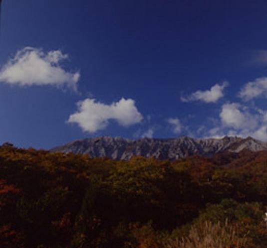 紅葉の南壁