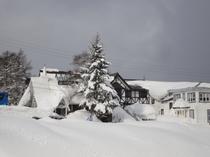 ラフォーレの冬