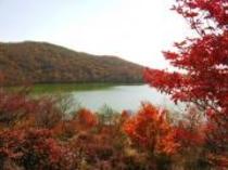 赤城山小沼湖畔の紅葉