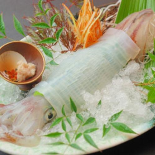 透き通る姿&甘みに感動! 活白イカの姿造りの一例