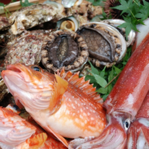イカ、岩カキ、アワビ、サザエ、メバル・・・浜坂港に水揚げされる、旬の魚介たち。