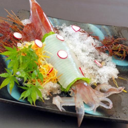 夏限定のお楽しみ♪ 活白イカの姿造りの一例
