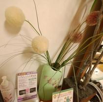 葵の間 花
